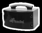 brain-bee