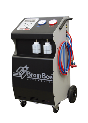 brainbee-6000-plus